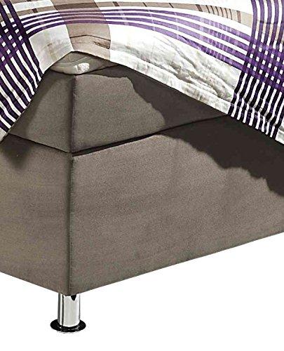 Maintal Boxspringbett Dean, 180 x 200 cm, Microvelour, 7-Zonen-Kaltschaum Matratze H3, taupe