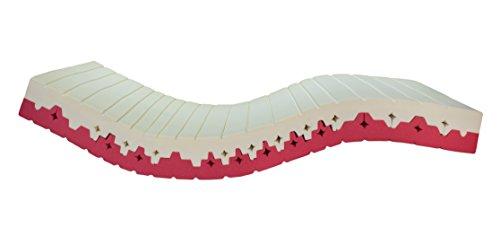 Hochwertige 2in1 Kaltschaummatratze - weichere und festere Seite durch Wenden - Orthopädische 7-Zonen Matratze - besonders langlebiger HR-Kaltschaum - H3 - 100x200 cm