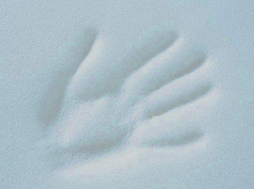 Betten-ABC Gelschaumtopper Ohne Bezug MaGeTo-5 Orthopädische Gelschaum - Passt Sich Dem Körper an - Grösse 180x200